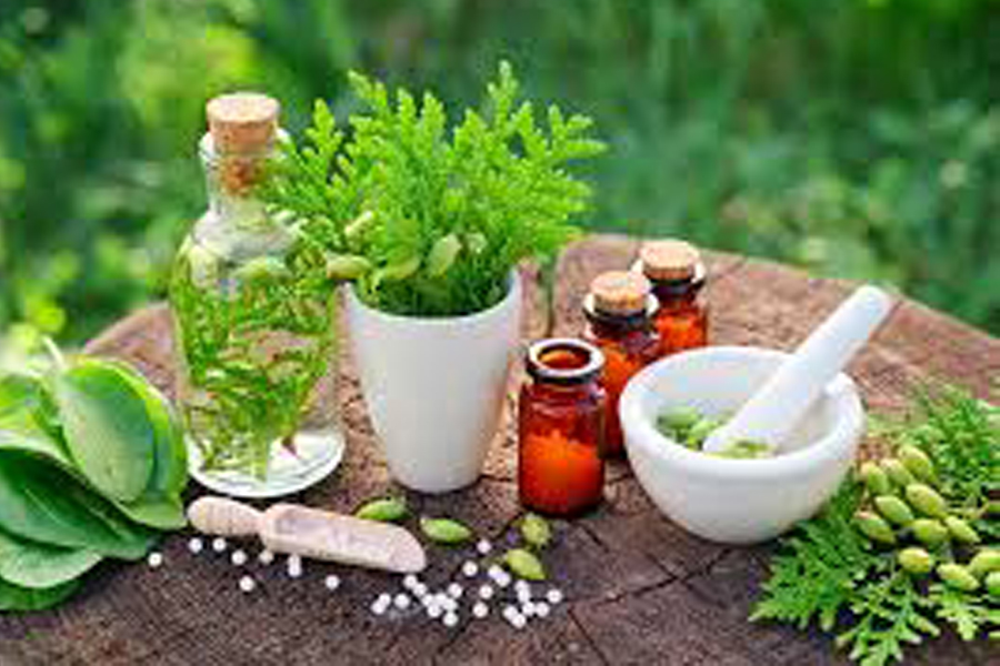 Properties In Malaysia Herbal Beauty Secrets
